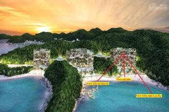 Flamingo Cát Bà Beach Resort - Biệt thự rừng trên cao