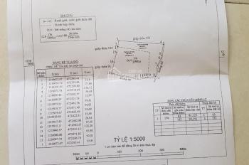 Cần bán 5,3 ha đất tại khu vực Thôn Thiện An, Xã Thiện Nghiệp, Thành phố Phan Thiết, Bình Thuận