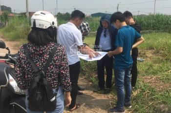600 triệu, bán đất Giao Tất, Kim Sơn, Gia Lâm, LH: 0376227354