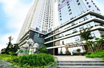 Ecolife 58 Tố Hữu, Nam Từ Liêm cho thuê văn phòng - kinh doanh dịch vụ 100m2, 250m2