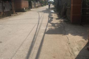 Bán đất mặt đường làng xã Liên Nghĩa - Văn Giang, Hưng Yên