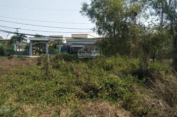 Gia đình khó khăn bán bán rẻ 1000m2 đất vườn gần đường Hương Lộ 11, SHR, bán 1.85 tỷ TL