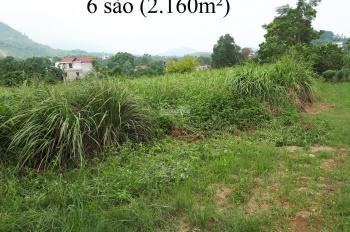Cần bán 2160m2 và 4000m2 đất tại thôn Thắng Đầu, xã Hòa Thạch, huyện Quốc Oai, Hà Nội 0966331159