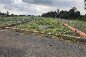 Bán đất MT đường nhựa cách KCN Đất Đỏ 800m