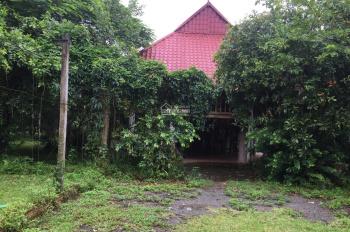 Cần chuyển nhượng lô đất 11000m2 đã có khuôn viên nhà vườn hoàn thiện tại Cư Yên, Lương Sơn, HB