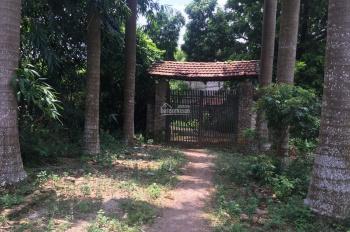 Cần chuyển nhượng lô đất 5700m2 đất đã có khuôn viên nhà vườn chưa hoàn thiện tại Lương Sơn, HB