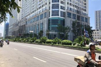 Cho thuê sàn thương mại tầng 1 dự án Roman Plaza, Tố Hữu