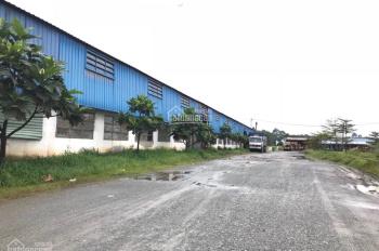 Bán nhà xưởng vị trí đẹp đường Hương Lộ 2, Quận Bình Tân, 12x28m, đường 8m