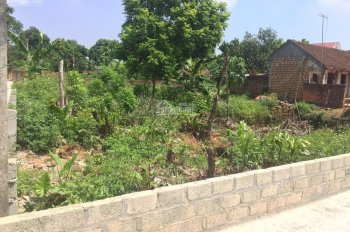Bán gấp 153m2 đất xã Bình Yên, Thạch Thất gần đường 420 với giá rẻ