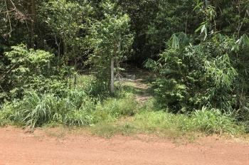 Bán đất An Bình, Phú Giáo, 1,1 ha, 23 tỷ thương lượng mạnh, mặt tiền DT 741, em làm giá 0971110488
