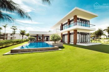 BT Saint Simeon đầu tư sinh lợi nhuận nhuận bền vững, đất ở sở hữu lâu dài tại Bà Rịa Vũng Tàu