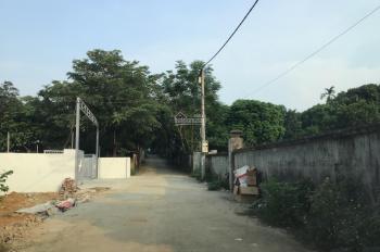 Bán 1700m2 đất thổ cư Đồng Vàng, Phú Mãn, Quốc Oai, Hà Nội