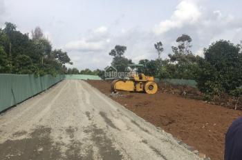 Đất nền Lộc An giá 2,5 triệu/m2 sổ hồng nằm cách Quốc Lộ 100m khu dân cư sầm uất