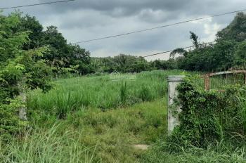Đất mặt tiền Cây Gõ 1942m2 (35x55m) An Phú, Củ Chi