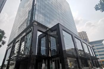 Cho thuê văn phòng tòa nhà Tân Hoàng Cầu diện tích từ 200 - 1.500 m2, giá 330 nghìn/m2/tháng