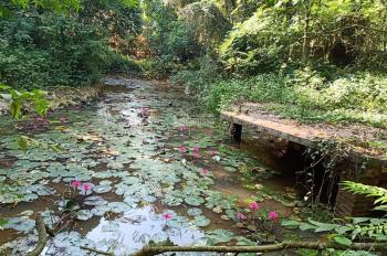 Cần bán 11.000m2 đất có khuôn viên hoàn thiện chỉ với 4.5 tỷ, tại Cư Yên, Lương Sơn, Hòa Bình