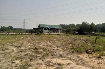 Cần bán đất mặt tiền Tỉnh Lộ 8 - Xã Tân Thạnh Tây - Củ Chi