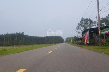 Cần bán đất biệt thự vườn gần sân bay Lộc An Hồ Tràm diện tích 504m2 đã lên 171m2 thổ cư