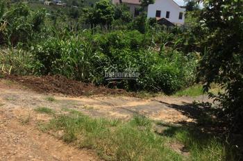 Bán 950m2 có 100m2 thổ cư, xã Ninh Gia, huyện Đức Trọng, tỉnh Lâm Đồng