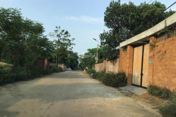 Bán 1955m2 đất thổ cư nhà vườn Khoang Mái, Đồng Trúc, Thạch Thất, Hà Nội