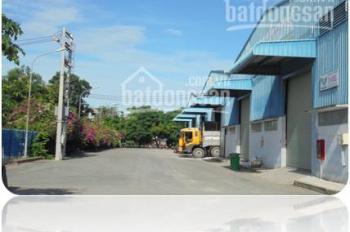 Cho thuê kho xưởng tại mặt tiền Quốc lộ 50, Ấp Tân Phước, Xã Tân Kim, Huyện Cần Giuộc, Tỉnh Long An