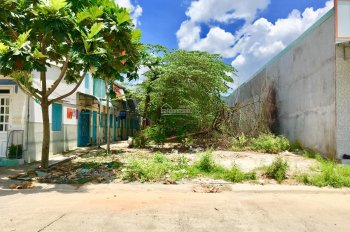 Gia đình tôi có mảnh đất cần bán gấp diện tích 300m2 thổ cư 100% sổ hồng riêng gần chợ và KCN
