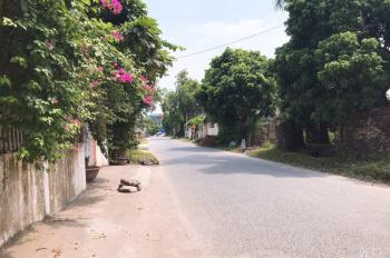 Chính chủ cần bán đất sổ đỏ chính chủ tại Tân Tiến, Văn Giang, Hưng Yên. Gần đường mới Ecopark.