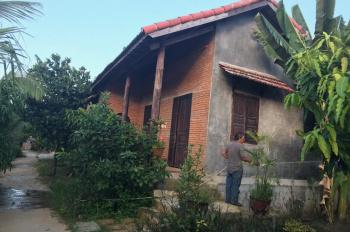 Nhà cho thuê nguyên căn Vĩnh Thạnh giá thuê từ 4 triêu/tháng, liên hệ: Hạnh Thảo 0943090932