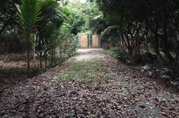 Bán trang trại 2500m2 ở mặt hồ khuôn viên BT nhà vườn nghỉ dưỡng Liên Sơn, Lương Sơn, Hòa Bình