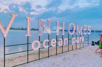 CC bán căn Ngọc Trai 5 - 40 hướng ĐN, khu bán đảo Ngọc Trai Vinhomes Ocean Park, LH 098.333.0964
