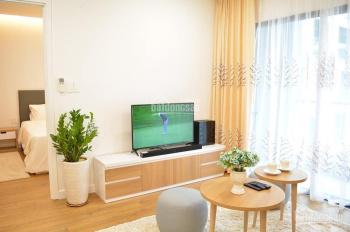 Cho thuê căn hộ Republic Plaza Cộng Hòa Tân Bình - 1PN/50m2 full nội thất. Giá 16 triệu/tháng