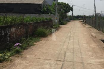 Bán 300m2 đất Liên Nghĩa, Văn Giang, Hưng Yên đường ô tô tránh nhau