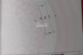 Cần bán thửa đất giãn dân khu Gốc Si Đầu Bạch, xã Cần Kiệm, huyện Thạch Thất