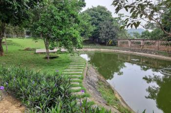 Bán đất xã Yên Bài, huyện Ba Vì, TP Hà Nội
