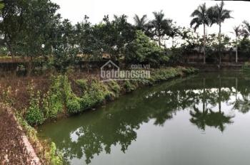 Bán 4.441m2 đất nhà vườn đường Đồng Trạng, Cổ Đông, Sơn Tây giá 6,8 tỷ, 0981 756 159