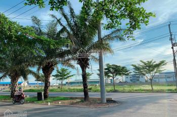 Thiếu nợ bán gấp đất đường Trần Văn Giàu 8x27m, SHR, liền kề BV CHợ Rẫy 2