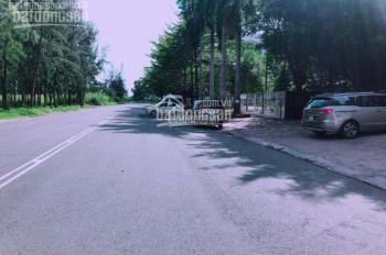 Bán đất KDC 13C Greenlife Phong Phú, BC, đường Vành Đai Trong DT 5x19m - giá 36tr/m2. HĐ mua bán
