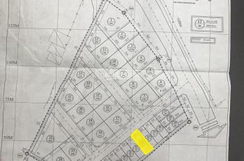 Bán đất khu đấu giá tại thị trấn Xuân Mai, thanh khoản cao, đã có sổ đỏ từng lô. Full 100% thổ cư