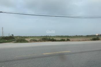 Cho thuê hoặc chuyển nhượng kho bãi nhà xưởng, đất công nghiệp, khu công nghiệp tại Bắc Giang