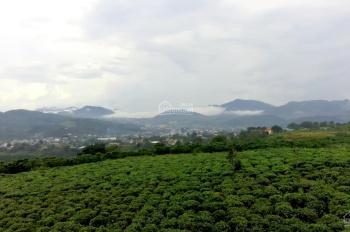 Khu nghỉ dưỡng 2000m2, view đỉnh núi nhìn ra QL20, cách trung Bảo Lộc tâm 6 km