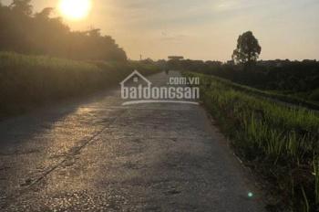 Ông anh cần tiền bán nhanh nhà đất tại thôn Hoàng Long, Đặng Xá, Gia Lâm, HN, LH Thiện 0844444407