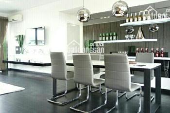 Cần cho thuê căn hộ ở chung cư Riverpark Premier-Q7 giá rẻ, lầu cao, view sông, LH: 0917522123