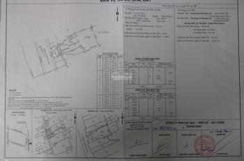 Chính chủ cần bán nhà cấp 4, sân vườn, đường Huỳnh Bá Chánh, Tân Kiên, Bình Chánh