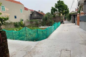 Chính chủ muốn bán mảnh đất tại thôn Lại Ốc, Long Hưng, Văn Giang, Hưng Yên