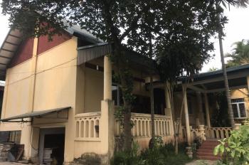Cho thuê 6000 m2 kho, xưởng, nhà điều hành gần Cầu Mai Lĩnh, Hà Đông