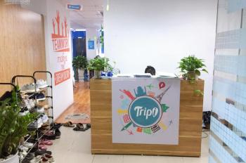 Cho thuê văn phòng 135m2 và 82m2 quận Hoàn Kiếm, phố Trần Quốc Toản