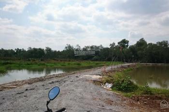 Bán đất Giáp Rạch Lớn, đường Số 5, phường Long Phước, Quận 9, DT: 7.800m2, giá chỉ 5,2tr/m2
