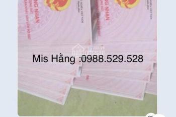Bán đất Hòa Lạc, thôn Đồng Vàng, Quốc Oai DT 155m2, đất ở lâu dài 0988 529 528