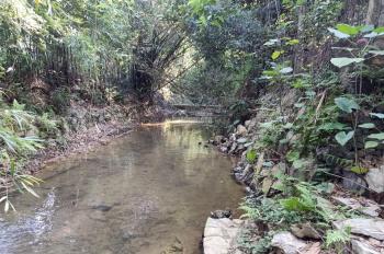 Cần bán 7100m2 trang trại nhà vườn tại Lương Sơn, Hòa Bình