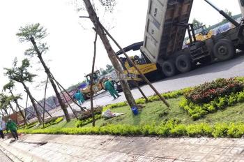 Bán đất gần TT huyện Bàu Bàng chỉ 6 tr/m2 thanh toán 4 đợt, tặng 10 chỉ vàng của công ty Kim Oanh